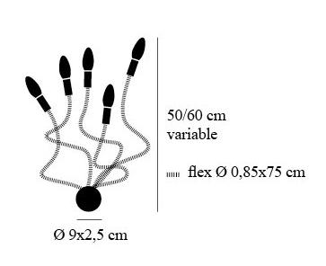 dimensions turciu 5