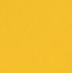 Jaune Toucan