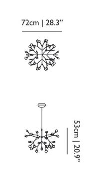 Dimensions suspension heracleum moooi small
