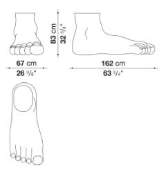 schéma pied